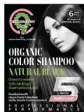 ORGANIC COLOR SHAMPOO NATURAL BLACK